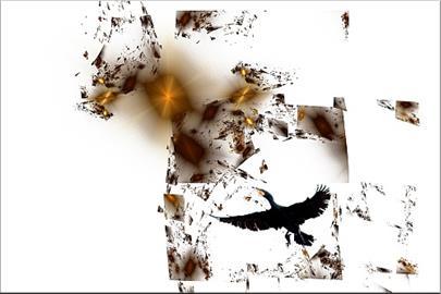 Touha křídel