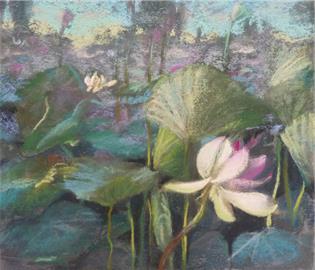 Among lotus